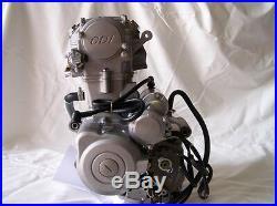 250cc Zongshen OHC Water Cooled Motorbike Engine Kit suit Ice Bear Maloo etc